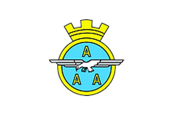 Logo Arma Aeronautica