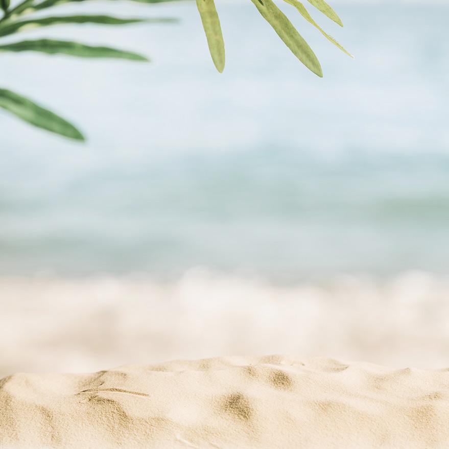 Dettaglio spiaggia