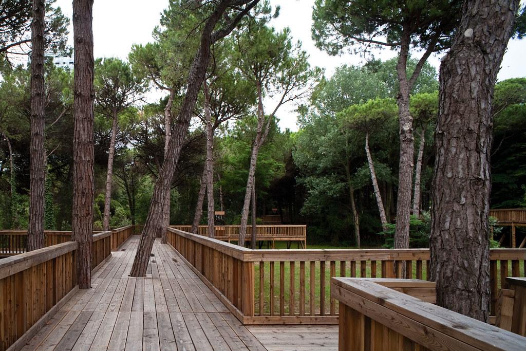 Parco Pineta percorso pedonale in legno